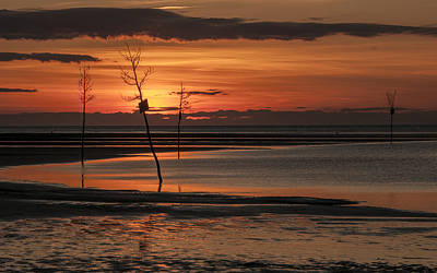 Photograph - Sunset  by Fred LeBlanc