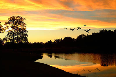 Photograph - Sunset Geese Flight Lake Eureka by Peg Toliver