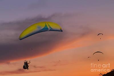 Photograph - Sunset Gliders by Soren Egeberg