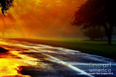 Photograph - Sunset Glint In The Mist by Tami Quigley