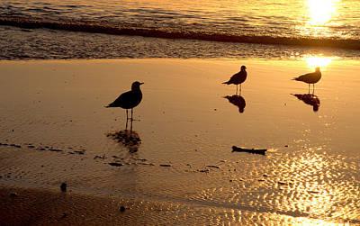 Photograph - Sunset Glow by AJ  Schibig