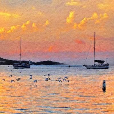 Sunset Harbor With Birds - Square Art Print