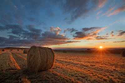 Photograph - Sunset Hay by Des Jacobs