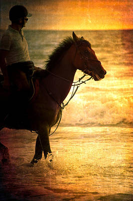 Sunset Horse Art Print by Loriental Photography