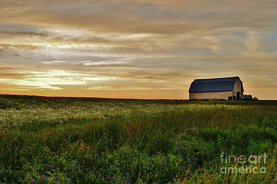 Sunset In Aroostook County Art Print