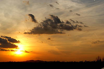 Sunset In Bavarian Forest Art Print by Adam  S