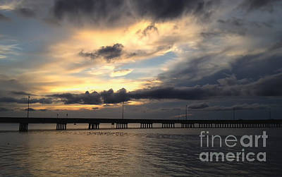 Photograph - Sunset In Florida by Gina Cormier