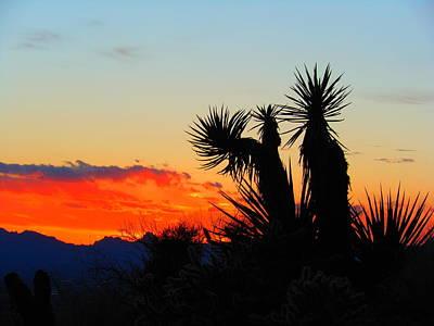 Sunset In Golden Valley Art Print
