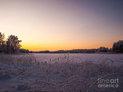 Photograph - Sunset In Lakeside Winterscape by Ismo Raisanen