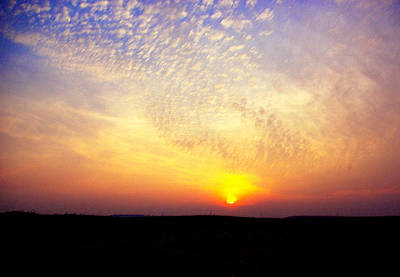Wall Art - Photograph - Sunset In Osage Hills by Daniel Kleefeld
