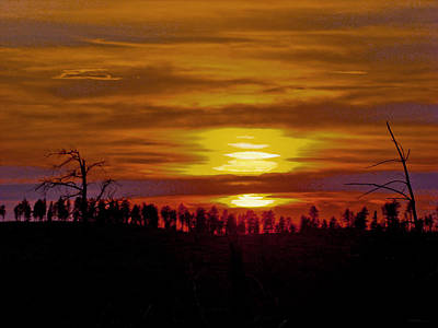 Art Print featuring the photograph Sunset In The Black Hills 2 by Cathy Anderson