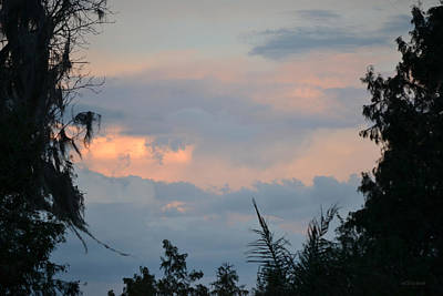 Photograph - Sunset In The Clouds Over Florida by rd Erickson