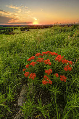Scott Bean Rights Managed Images - Sunset in the Flint Hills Royalty-Free Image by Scott Bean