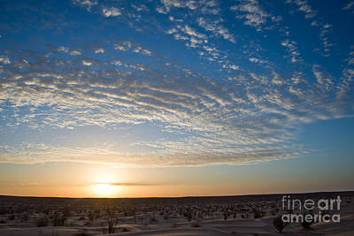 Sahara Photograph - Sunset In The Sahara by Delphimages Photo Creations