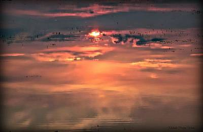Photograph - Sunset In The Water by Michaela Preston
