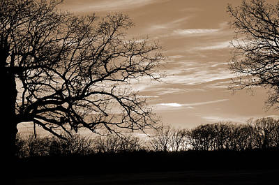 Photograph - Sunset Is Sepia  by Jeanne May