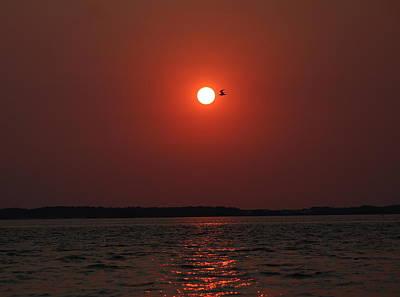 David Jones Photograph - Sunset Kiss by David  Jones