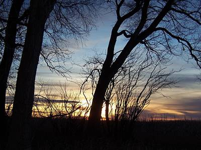 Sunset 1 Art Print by Larry Campbell