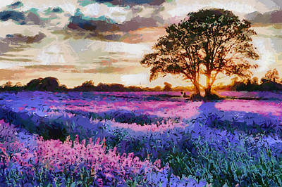 Sunset Lavender Field Art Print