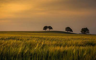 Farm Scenes Photograph - Sunset Light by Chris Fletcher