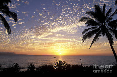 Photograph - Sunset Maui Style by David Olsen