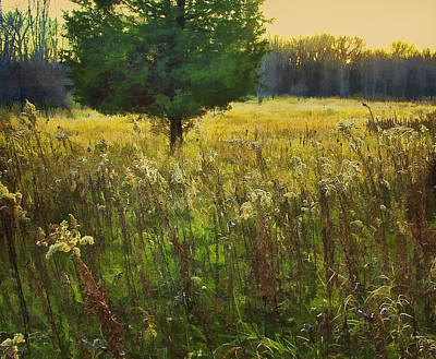 Art Print featuring the photograph Sunset Meadow by John Hansen