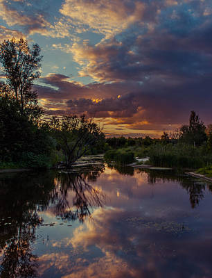 Photograph - Sunset Mirror by Dmytro Korol