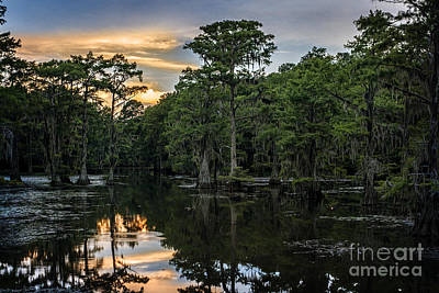 Photograph - Sunset On Caddo Lake by Tamyra Ayles