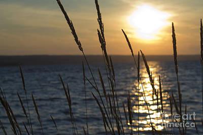 Sunset On Cayuga Lake Art Print