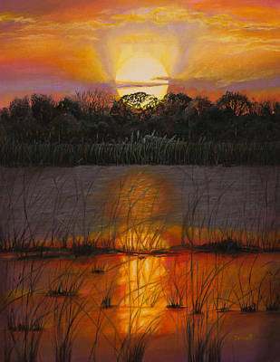 Sunset On Florida's Lake Art Print