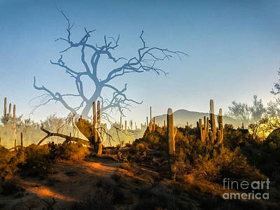 Photograph - Sunset On Latigo by Marianne Jensen