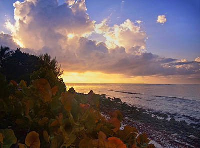 Photograph - Sunset On Little Cayman by Stephen Anderson
