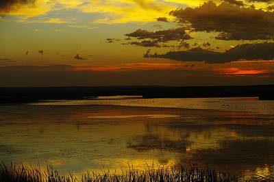 Birds Rights Managed Images - Sunset On Medicine Lake Royalty-Free Image by Jeff Swan