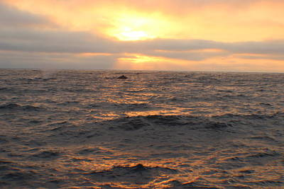 Photograph - Sunset On Monterey Bay by John Mathews