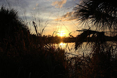 Photograph - Sunset On Pine Island by Suzie Banks