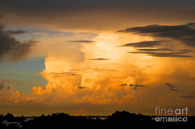Photograph - Sunset On Sarasota Bay by Mariarosa Rockefeller