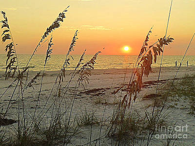 Photograph - Sunset On Siesta Key by Lou Ann Bagnall