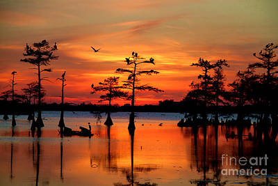 Swamp Photograph - Sunset On The Bayou by Carey Chen