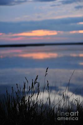 Photograph - Sunset On The Lake by Birches Photography