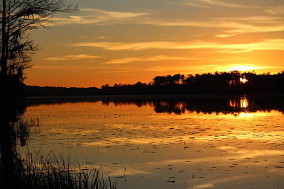 Sunset On The Lake Art Print by Cynthia Guinn