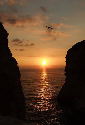 Owls - Sunset on the Mediterranean  by Diana Laura Zaidan