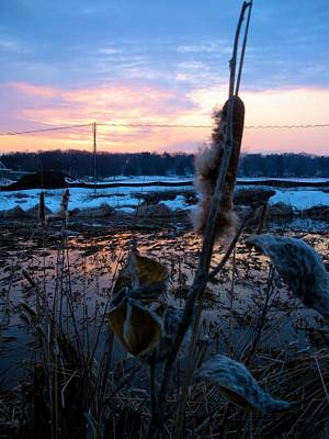 Art Print featuring the photograph Sunset On The Pond by Zafer Gurel