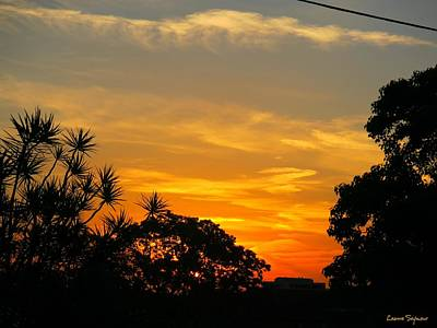 Photograph - Sunset On My Way Home by Leanne Seymour