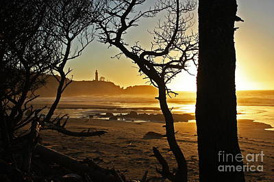 Sunset On Yaquina Head One Print by Donald Sewell