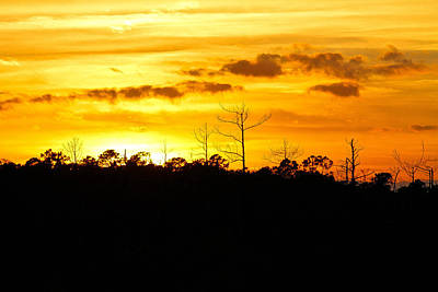 Photograph - Sunset Orange by Jessica Brown