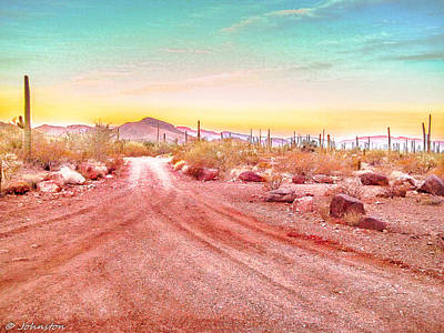 Photograph - Sunset Organ Pipe Cactus National Monument by Bob and Nadine Johnston