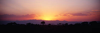 Baobab Photograph - Sunset Over A Landscape, Tarangire by Panoramic Images