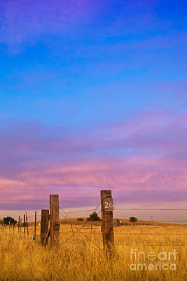 Photograph - Sunset Over Boundary by Rima Biswas