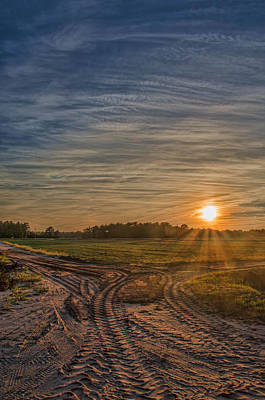 Photograph - Sunset Over Cranberry Bogs by Beth Sawickie