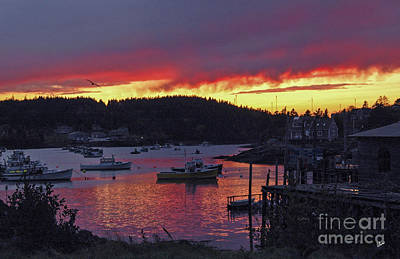 Photograph - Sunset Over Cutler Harbor by Alana Ranney